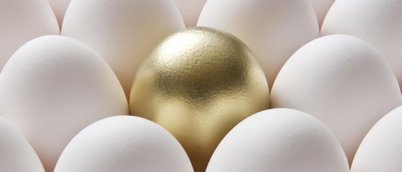 Skab dit eget guldæg med hjælp fra Online Marketing Specialist